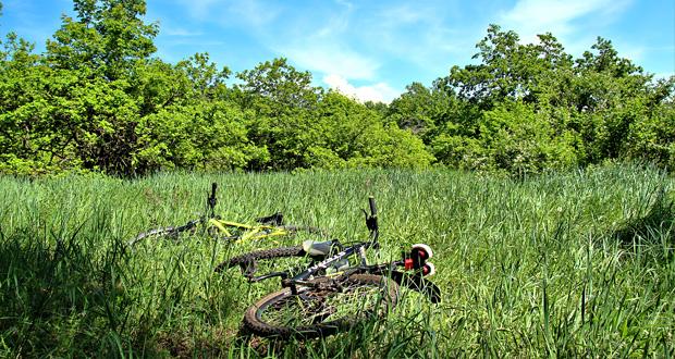 Экскурсия на велосипедах. Кумысная поляна